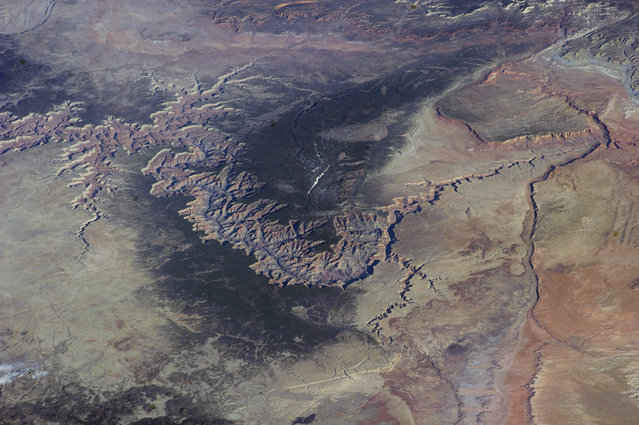 Grand Canyon From ISS